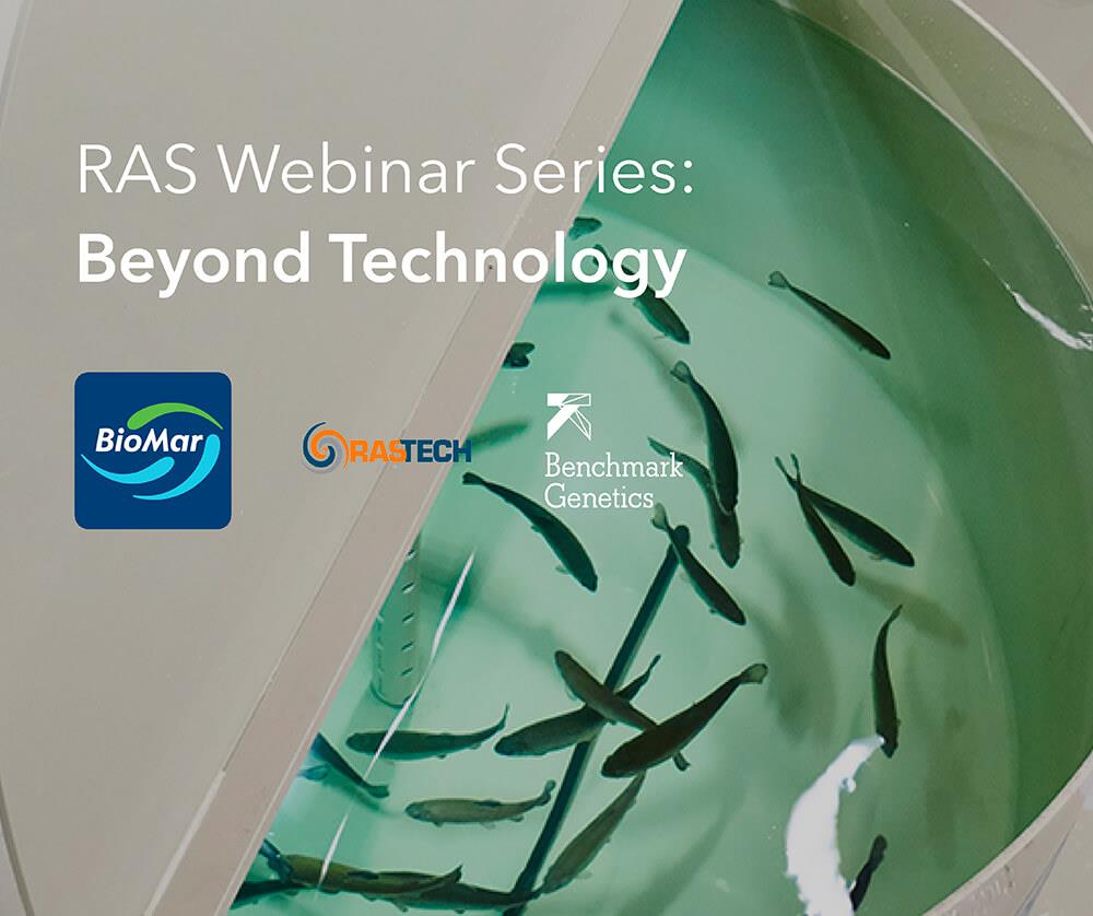 Join BioMar, RASTech and Benchmark Genetics in a two-part webinar series focused on the role of fish biology and nutrition in recirculating aquaculture system (RAS) environments.